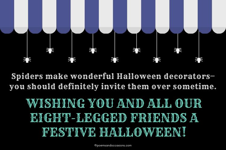 Have a festive Halloween with spiders